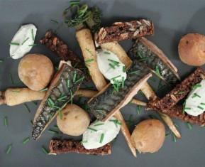 Makrel - Sommer i det nye nordiske køkken